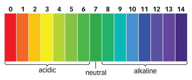 ph-scale.jpg